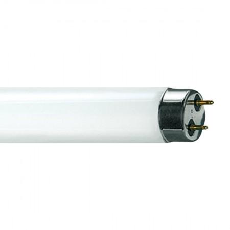 """Sylvania 22438 FO32/V41/ECO 48"""" T8 4100K Tube"""