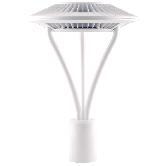 RAB 52 Watt LED Type V Distribution Post Top Area Light with Clear Tempered Glass Lens - 5000K 120V-277V  4877 Lumen White Fixture (ALED5T52W)