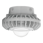 "RAB 42 Watt 10"" LED Class I, Division 2 Hazardous Location Ceiling Mount Downlight Grey Fixture - 5000K 120V-277V 73 CRI 4914 Lumen (HAZXLED42C)"