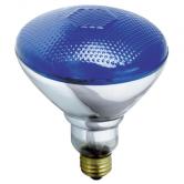 Satco 100 watt BR38 Incandescent; Blue; 2000 Average rated hours; Medium base; 230 volts (100BR38/B/230V)